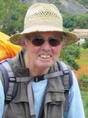 Günter Tobias Hiermer